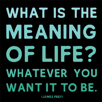 MD167~The-Meaning-Of-Life-James-Frey-Posters